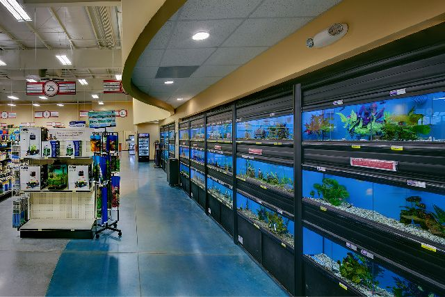 Showcase virginia s largest pet supply store installs for Fish store virginia beach