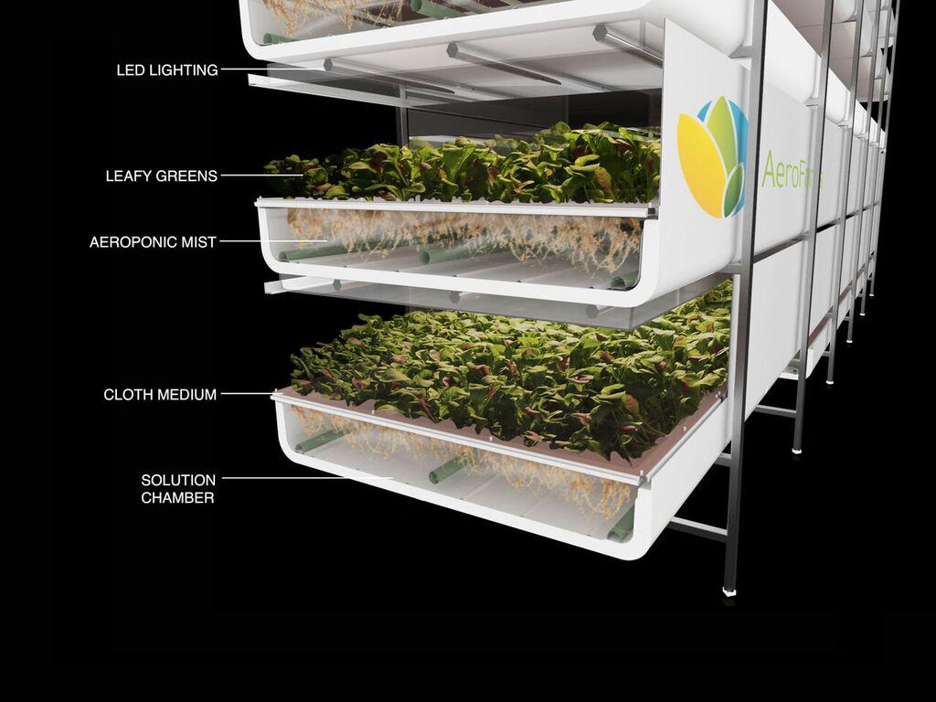 AeroFarms的垂直氣耕農場採用噴霧、LED燈光讓作物能夠吸收養分、光線。(所有圖片來源:AeroFarms)