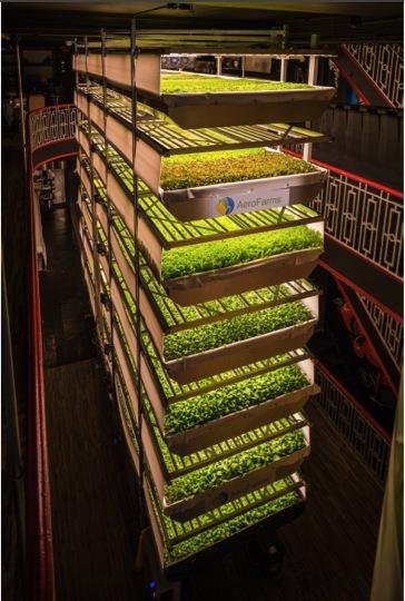 在室內沒有陽光、泥土的環境下,植物接收最適合生長的LED燈的光線,成長速度較傳統農作方式還要快。LED燈甚至還能控制產物的各種細項,例如口感、顏色等。