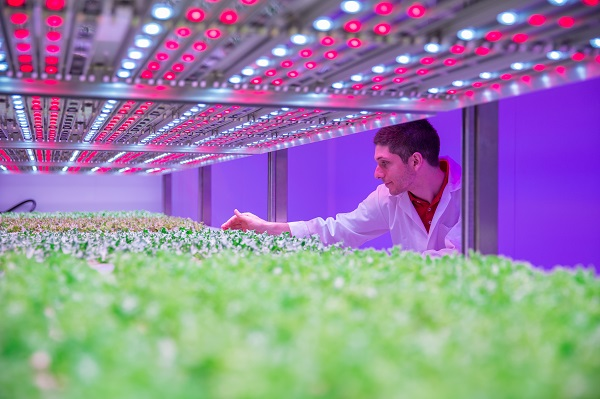 research vertical farming 2018 vertical farming plant factoryresearch reporton global marketthe globalvertical farming plant factoryindustry 2018market research report is a professional and in-depth study on the.