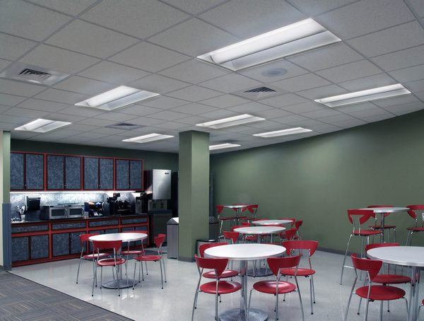 Charming Acuity Brands Avanté® LED Direct/Indirect Recessed Luminaires From Lithonia  Lighting® In A Office Setting. (Acuity Brands/LEDinside)